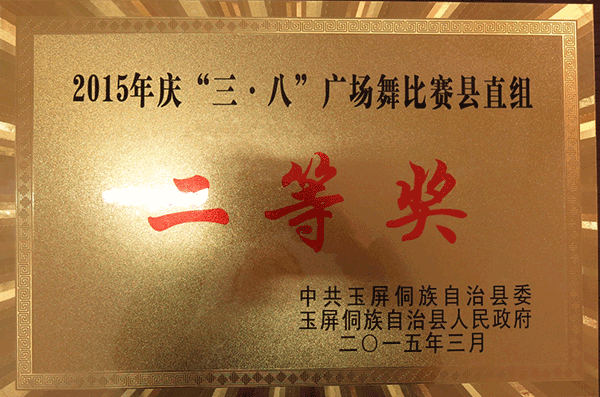 广场舞比赛二等奖